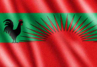 Política angolana: Há cinco candidatos à presidência da UNITA