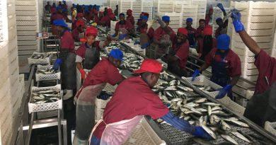 Namíbia investiga corrupção em acordo de pescas com Angola