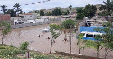 Ambientalistas criticam lei que permite exploração de recursos em zonas protegidas de Angola