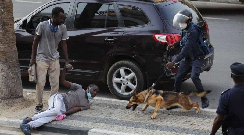 Polícia deve ser instituição-garante da segurança dos cidadãos e não enveredar em práticas de assassinato, diz Friends of Angola